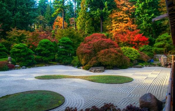 Picture autumn, trees, Park, lawn, track, USA, the bushes, Oregon, Portland, Arlington Heights