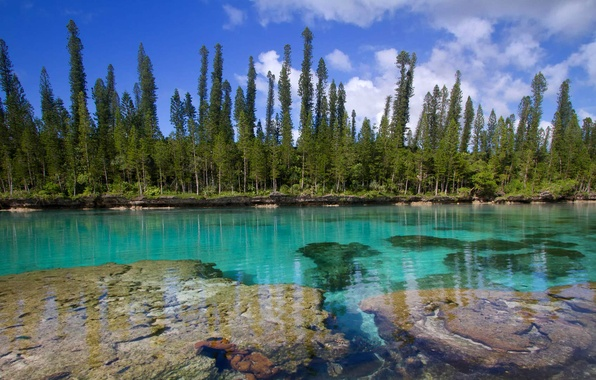 Picture The Pacific ocean, New Caledonia, Isle of pines