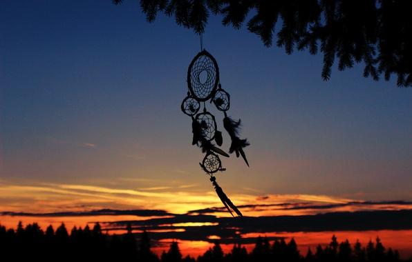 Picture the evening, feathers, silhouette, talisman, Dreamcatcher, Dreamcatcher
