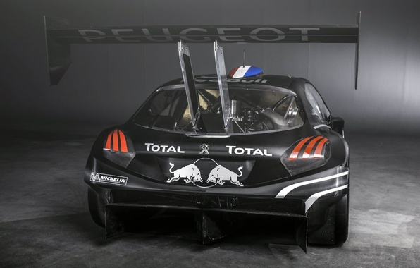 Picture Peugeot, Peugeot, rear view, racing car, 208, T16, Pikes Peak, Pikes Peak
