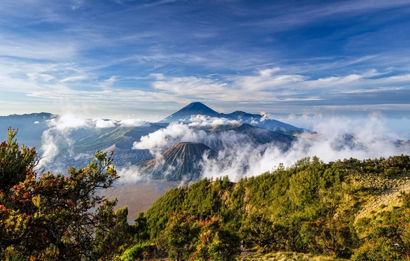 Picture Indonesia, Java, Tengger, volcanic complex-the Caldera TenGer, the volcano Bromo