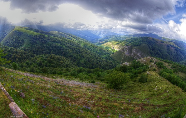 Picture forest, the sky, clouds, mountains, Clouds, Spain, Spain, grass., Cantabria