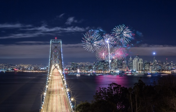 Picture the sky, clouds, night, bridge, lights, Bay, fireworks, USA, CA, San Francisco