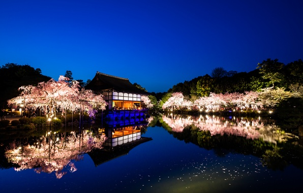 Picture water, trees, landscape, nature, reflection, the evening, Japan, Sakura, Kyoto, gardens, The Heian Shrine