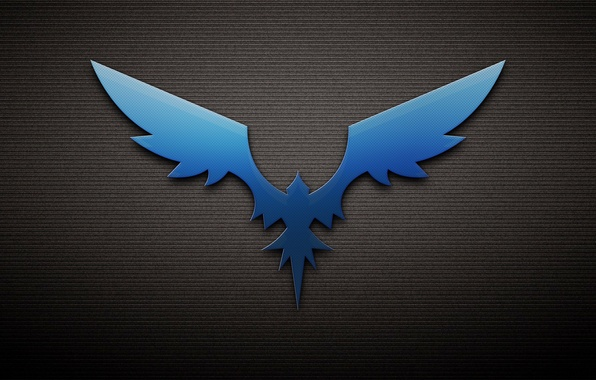 Picture bird, wings, Phoenix, the dark background