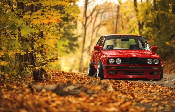 Picture road, autumn, forest, leaves, BMW, E30