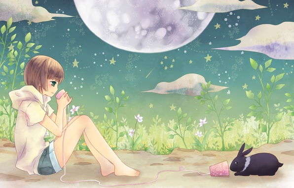 Picture summer, night, mood, the moon, stars, anime, rabbit, girl, phone, two, friends, the conversation