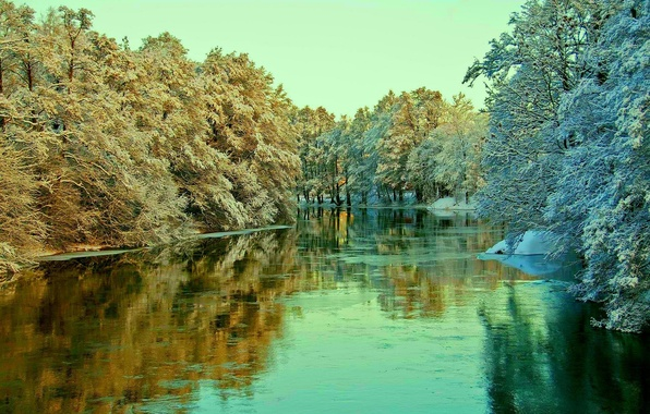 Picture winter, frost, the sky, snow, trees, landscape, river