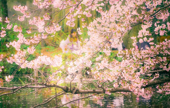 Picture pool, flowers, tree, people, cherry blossoms, reflection, branches, mirror