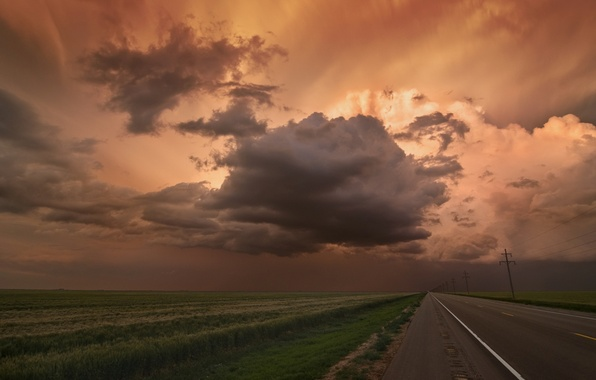 Picture road, field, the sky, landscape, clouds, nature, horizon