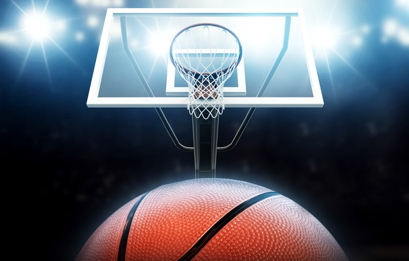 Picture lights, mesh, the ball, ring, shield, basketball
