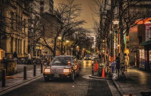 Picture trees, bike, people, street, lights, neon, Japan, Kyoto, cars, stores, life, lamppost, restaurants