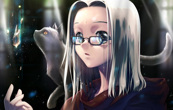 Picture cat, crystal, girl, art, glasses, white hair, rugia.dian
