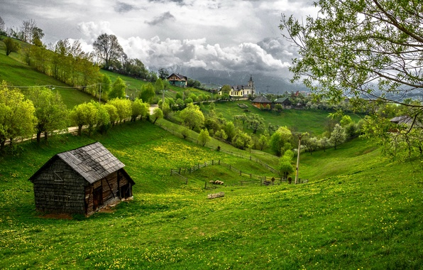 Picture greens, grass, trees, home, Romania, Transylvania