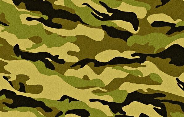 Picture khaki, camouflage, military