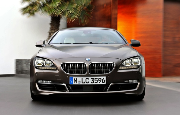 Picture Auto, BMW, Machine, Boomer, Logo, Grille, BMW, The hood, Lights, 6 Series, Windshield