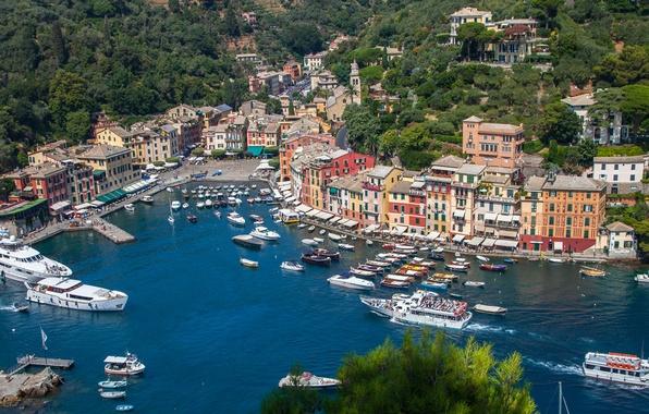 Picture sea, landscape, home, Bay, yachts, boats, Italy, panorama, Portofino
