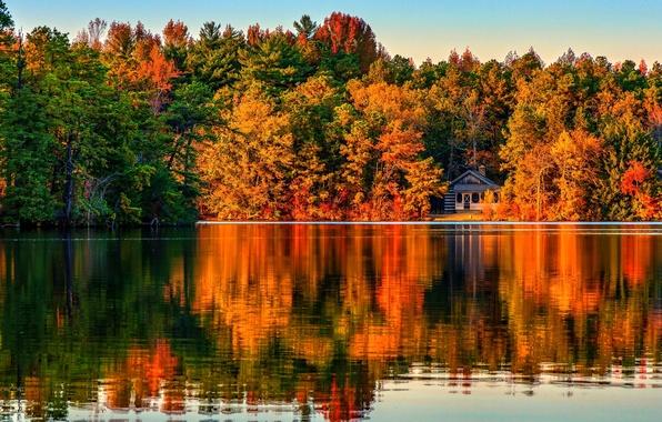 Picture autumn, forest, trees, landscape, Villa, home, Nature, house, forest, architecture, trees, landscape, nature, autumn, view, …