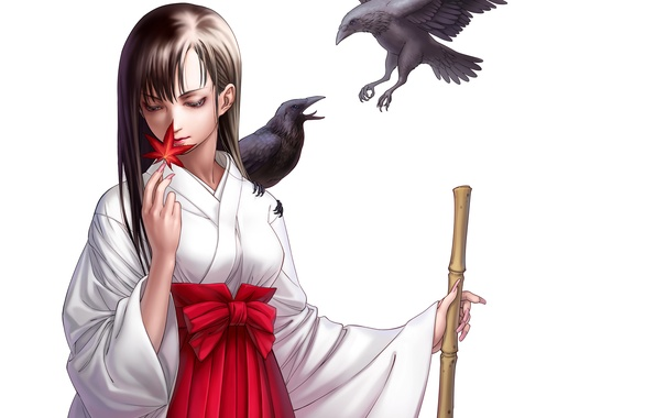 Picture girl, birds, sheet, crows