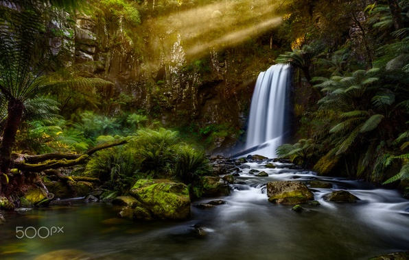 Picture forest, light, nature, river, waterfall