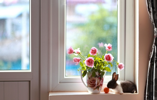 Picture roses, bouquet, rabbit, window, pitcher