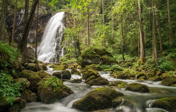 Picture forest, trees, stones, waterfall, moss, Austria, river, Austria, Salzburg, Salzburg, Gollinger Waterfall, Golling Waterfall