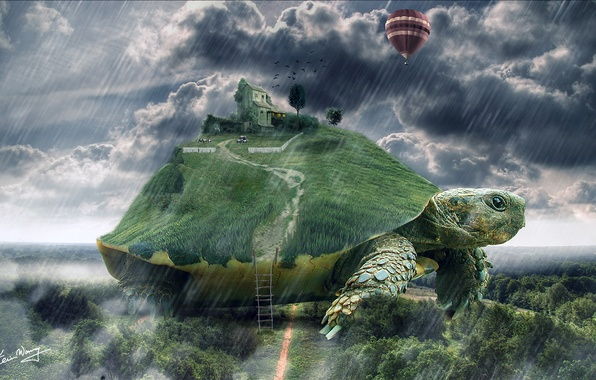 Picture house, balloon, rain, turtle, art, ladder, giant