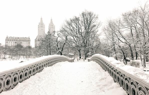 Picture winter, snow, trees, the city, Park, building, home, New York, USA, USA, Manhattan, New York, …