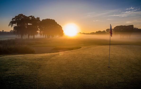 Picture field, landscape, sport, Golf