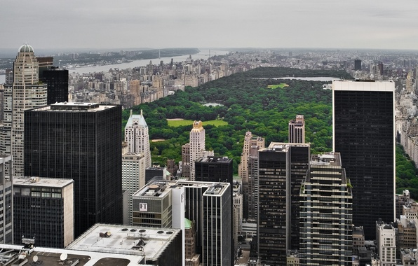 Picture USA, grass, skyline, trees, New York, Manhattan, NYC, park, New York City, Central Park, buildings, ...