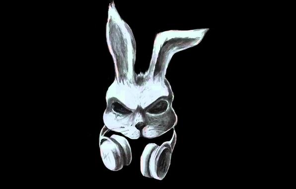 Picture Music, rabbit, rabbit, rap, Domino, Dom!no