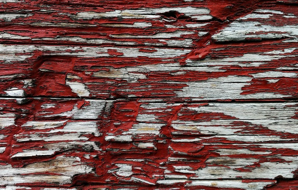 Picture red, tree, paint, color, texture