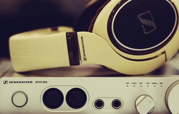 Picture music, technique, headphones, SENNHEISER, HD598