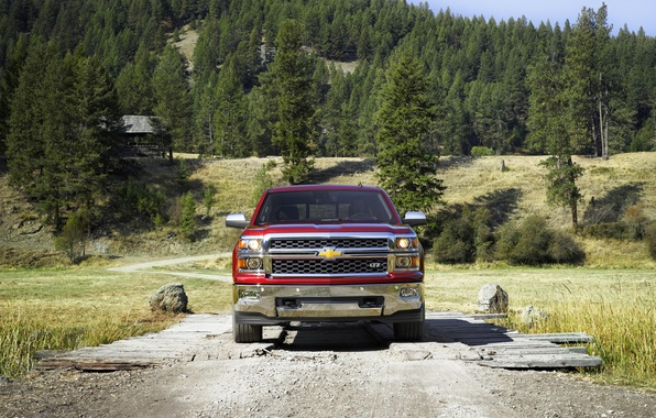 Picture Red, Chevrolet, Forest, Chevrolet, Lights, Pickup, The front, Silverado