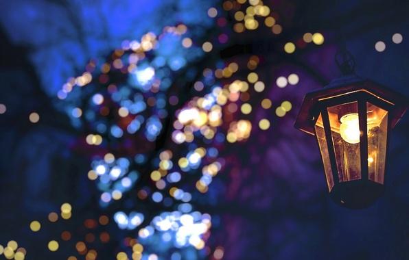 Wallpaper night, fairy lights, Christmas, bokeh, winter ...