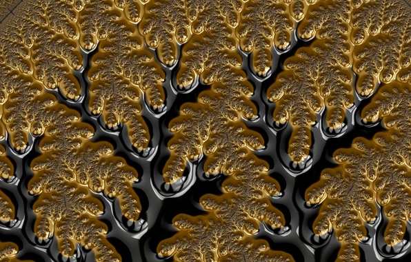 Picture pattern, branch, abstrakcija. fractal