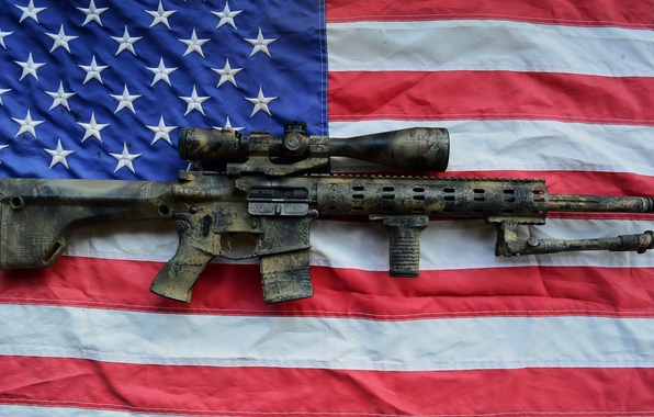 Picture weapons, flag, AR15, assault rifle, SPR