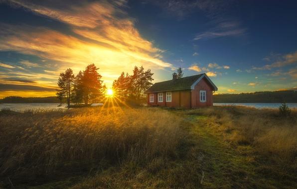 Picture trees, sunset, lake, house, Norway, reed, Norway, RINGERIKE, Ringerike