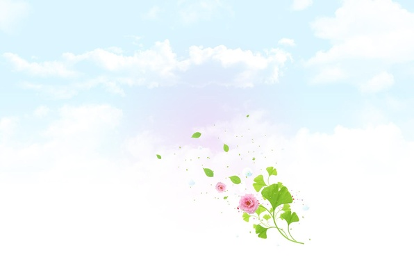Picture flower, the sky, clouds