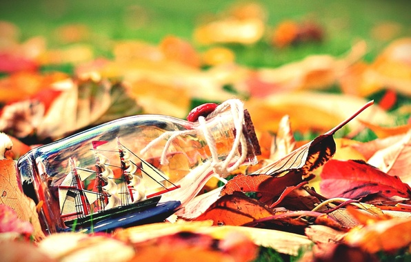 Picture autumn, leaves, background, widescreen, Wallpaper, mood, boat, ship, bottle, sails, wallpaper, leaves, the ship, widescreen, ...
