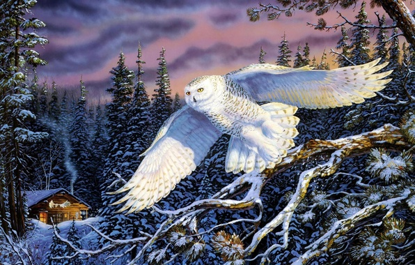 Picture winter, forest, nature, owl, landscapes, ate, hut, painting, painting, snow owl, Whisper on the Wind, …