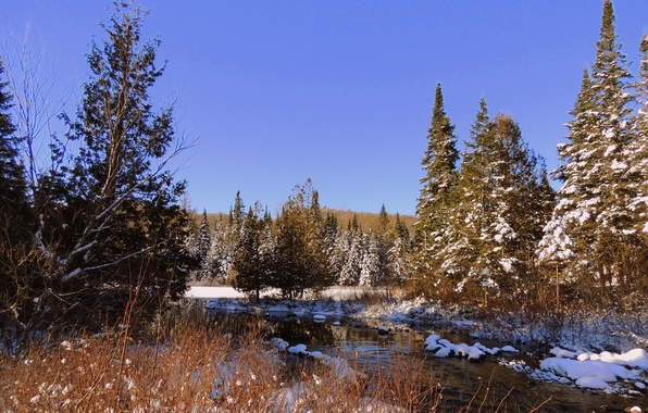 Picture autumn, forest, the sky, snow, trees, river