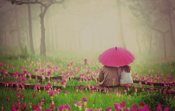 Picture greens, grass, girl, love, flowers, nature, umbrella, background, pink, widescreen, Wallpaper, romance, vegetation, mood, woman, ...