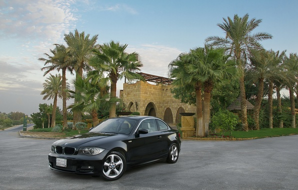 Picture machine, palm trees, black, mansion, BMW 125i