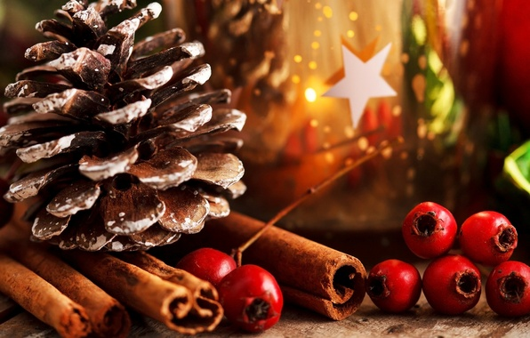 Picture leaves, berries, holiday, sticks, New Year, Christmas, red, the scenery, cinnamon, bump, Christmas, New Year, …