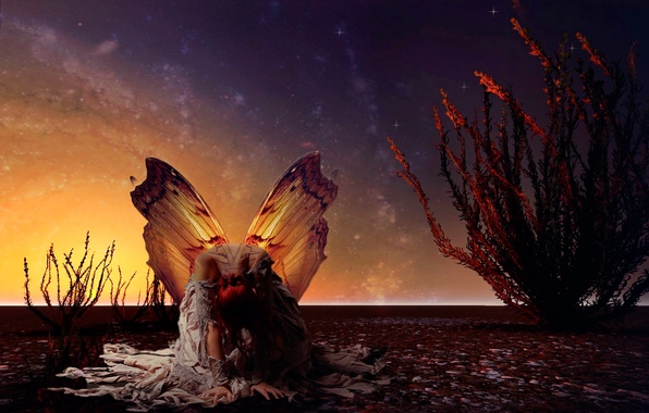 Picture girl, butterfly, wings, stars, art, moth