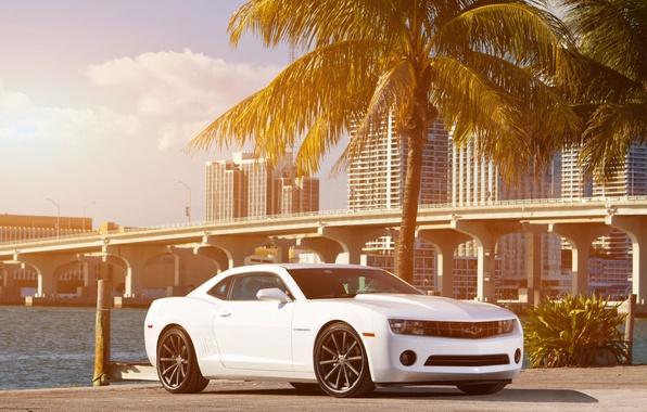 Picture white, the sky, clouds, bridge, the city, Palma, coast, Chevrolet, Camaro, white, Chevrolet, muscle car, …