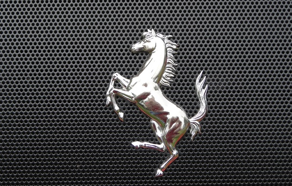 Picture metal, horse, grille, emblem, 2014