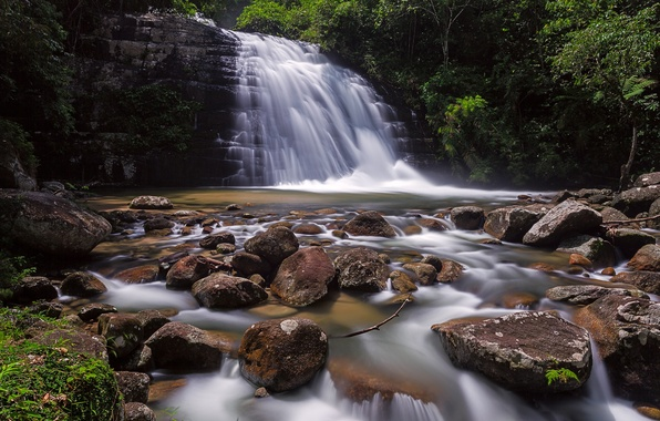 Picture forest, trees, rock, river, stones, waterfall, stream