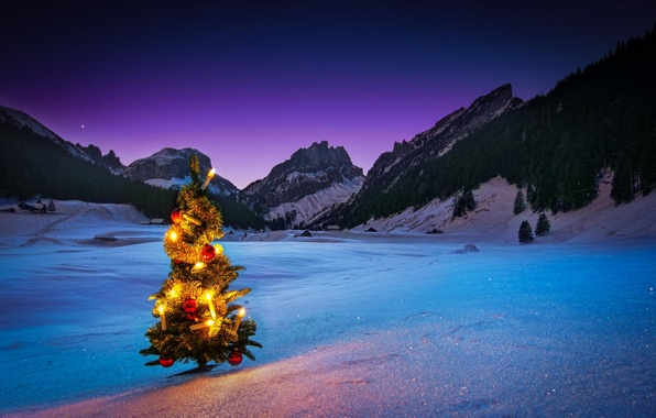 Picture winter, snow, mountains, night, tree, new year, garland